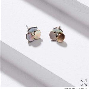 Loft shell floral stud earring